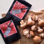 mushroom seasoning
