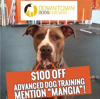 DOWNTOWN DOGS Coupon Code